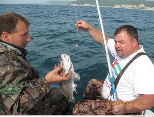 на что ловить рыбу летом на море